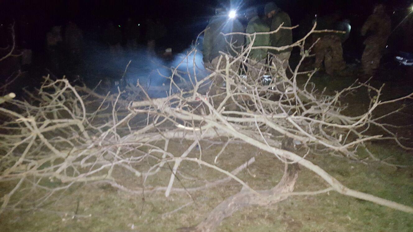 mangusta2016-notte-1