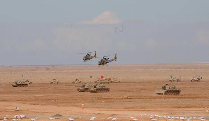 elicotteri.carri.egiziani