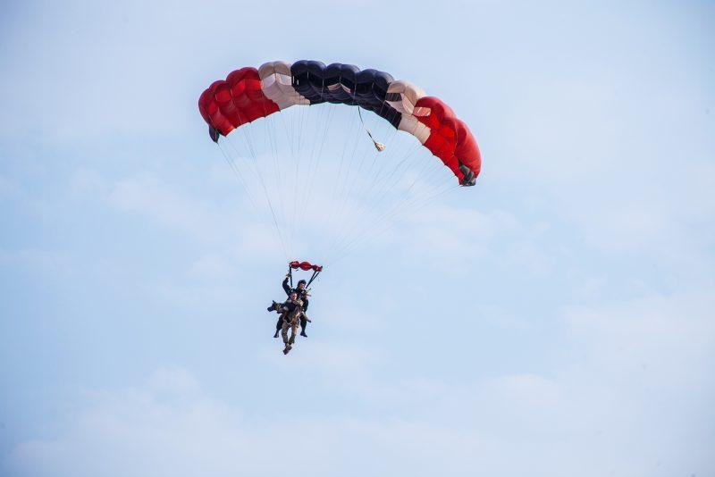 01-skydiving-dogs-rainforest-ngsversion-1476820810799